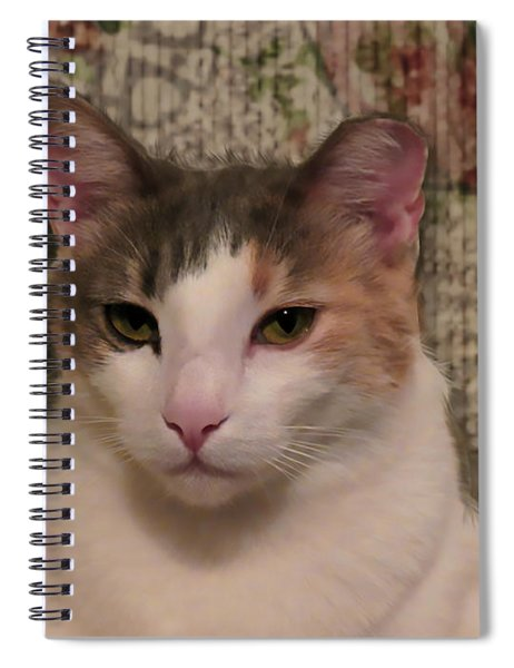 Abstract Bobbie Spiral Notebook