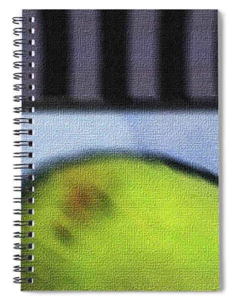 Abstract Fruit Art    138 Spiral Notebook