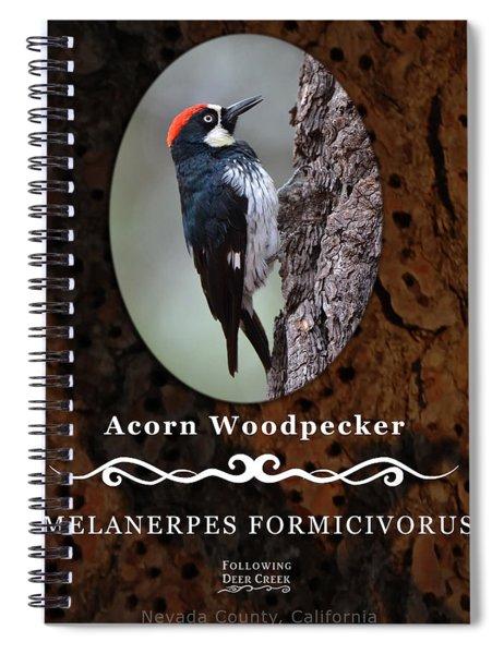 Acorn Woodpecker Granary Tree Spiral Notebook