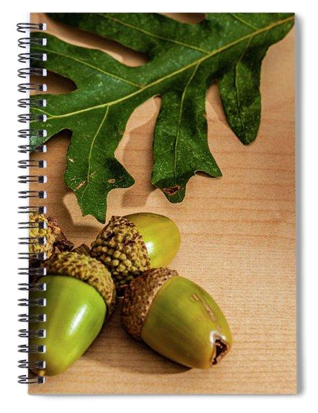 Acorns From The Salem Oak Tree Spiral Notebook