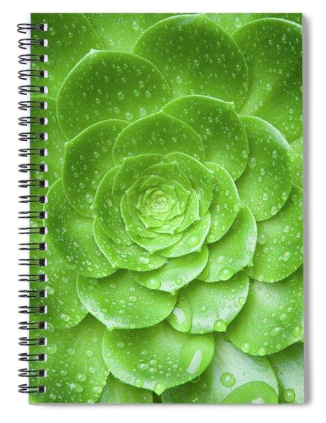 Aenomium 3916 Spiral Notebook