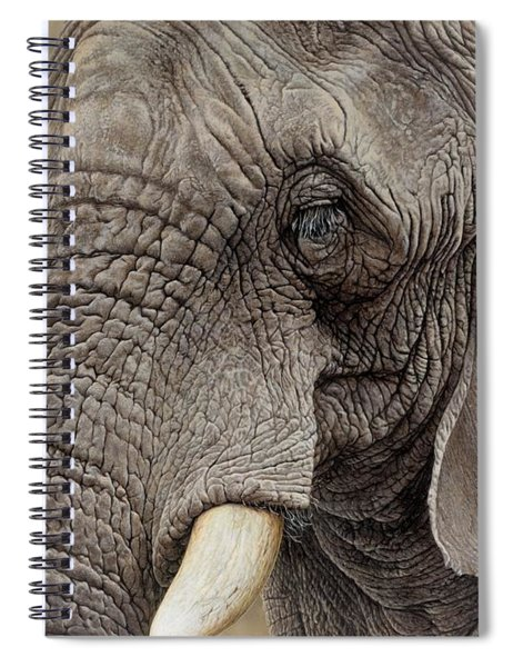 African Elephant Spiral Notebook by Alan M Hunt