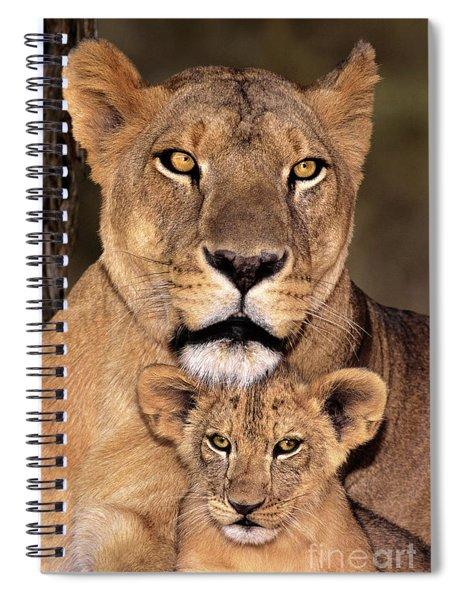 African Lions Parenthood Wildlife Rescue Spiral Notebook
