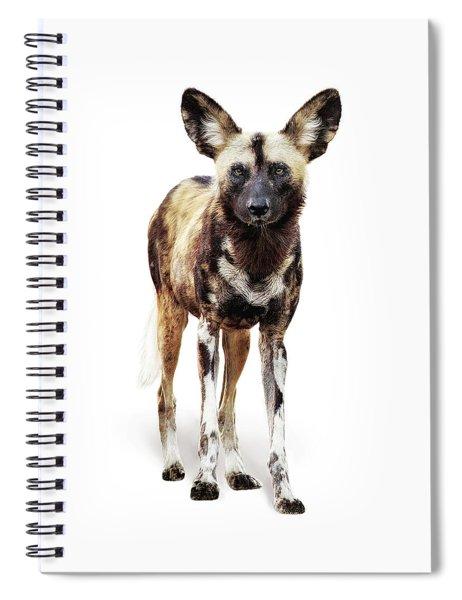 African Wild Dog Named Ginger Spiral Notebook