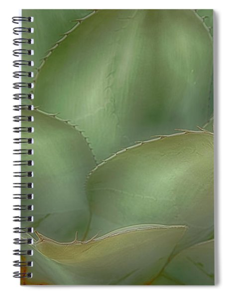 Agave Softened Spiral Notebook