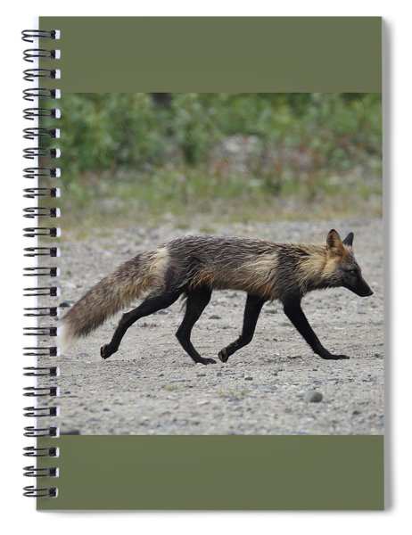 Alaskan Cross Fox Spiral Notebook