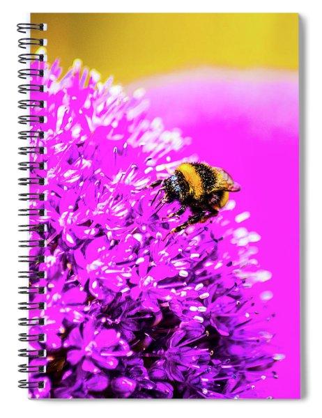 Allium With Bee 2 Spiral Notebook