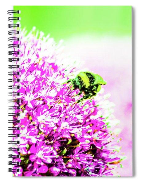 Allium With Bee 3 Spiral Notebook