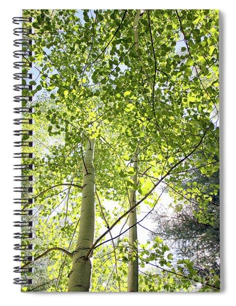 Alpine Glow Spiral Notebook