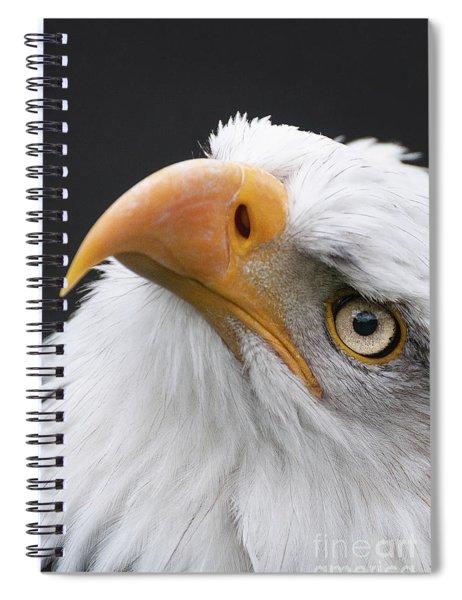 Always Look Up Spiral Notebook