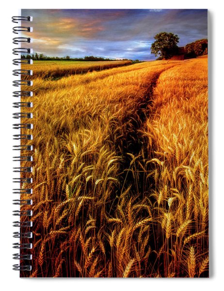 Amber Waves Of Grain Painting  Spiral Notebook