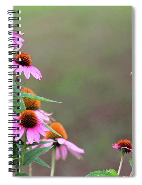 American Goldfinch On The Coneflowers Spiral Notebook