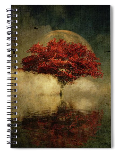 American Oak With Full Moon Spiral Notebook