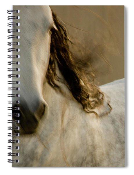 Americano 1 Spiral Notebook