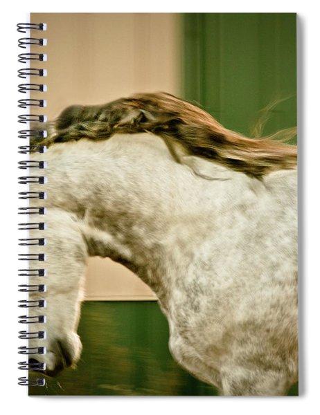 Americano 14 Spiral Notebook