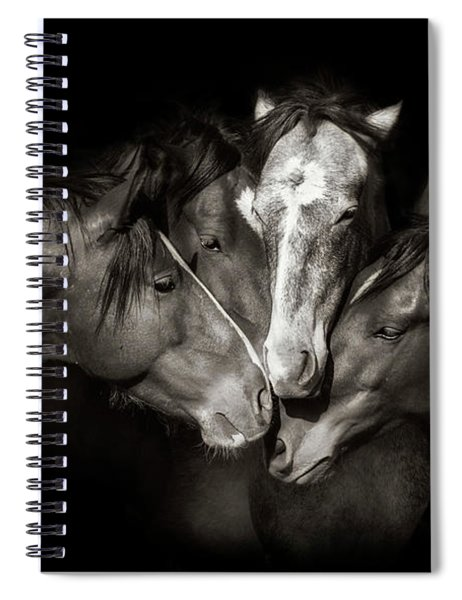 Amigos Black And White Spiral Notebook