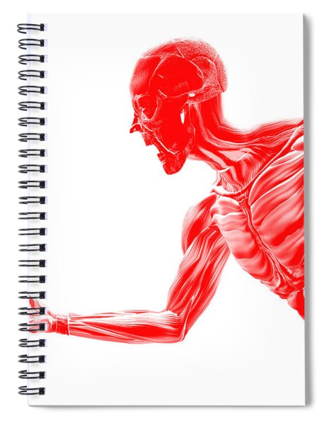 An Image Of A Male Without Any Skin, A Useful Image For Medical Related Images Or Halloween. - Illus Spiral Notebook