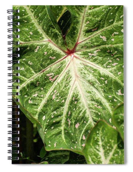 Anatomy Of A Leaf Spiral Notebook