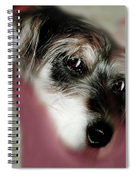 And This Is Sparky 7 Spiral Notebook