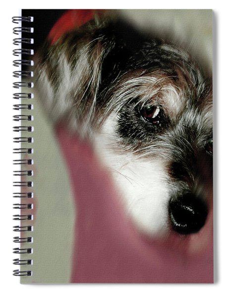 And This Is Sparky Spiral Notebook