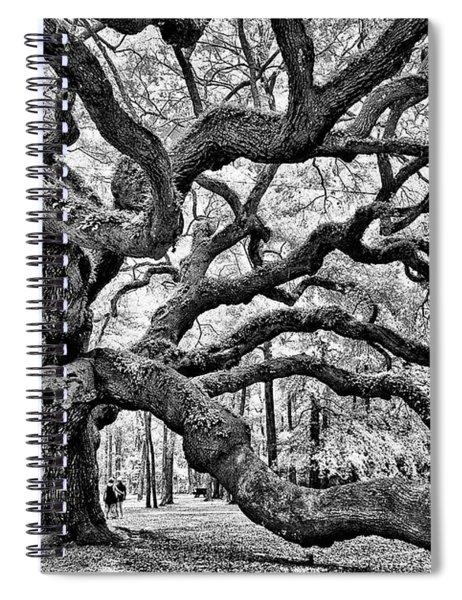Angel Oak Tree Spiral Notebook
