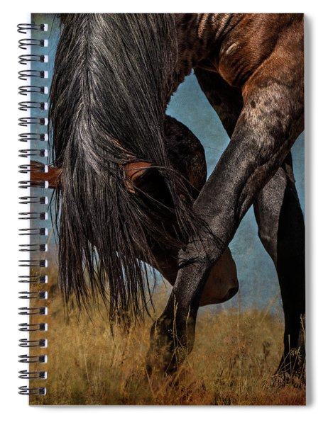 Angles Of The Horse Spiral Notebook