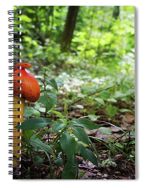 Another Green World Spiral Notebook