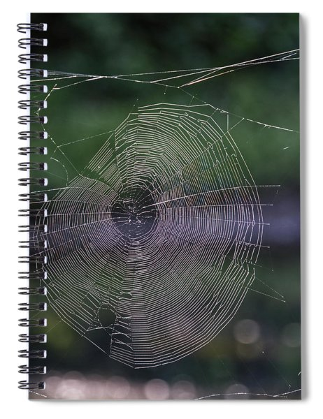 Another Web Spiral Notebook