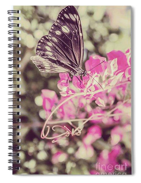 Antique Spring Spiral Notebook