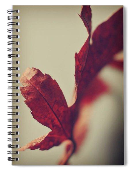 Anxious Nights Spiral Notebook
