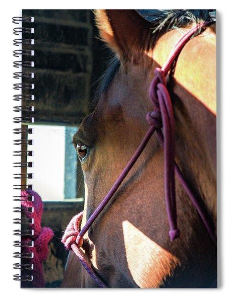 Anxiously Waiting Spiral Notebook