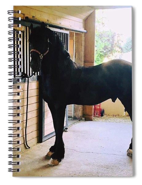 Apollo's Light Spiral Notebook