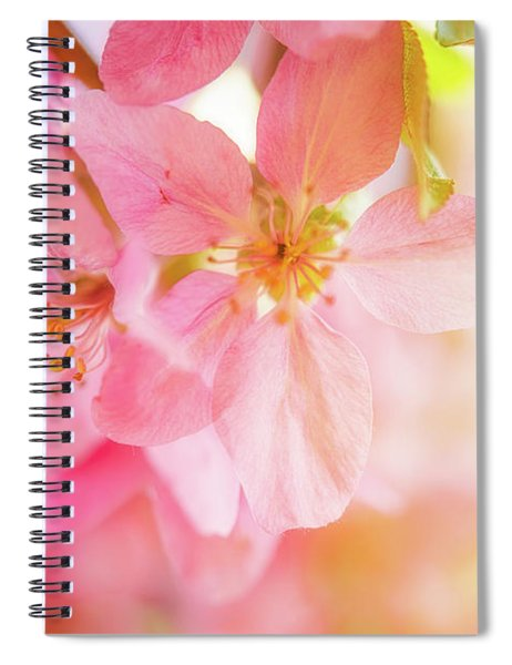 Apple Blossoms Bright Glow Spiral Notebook