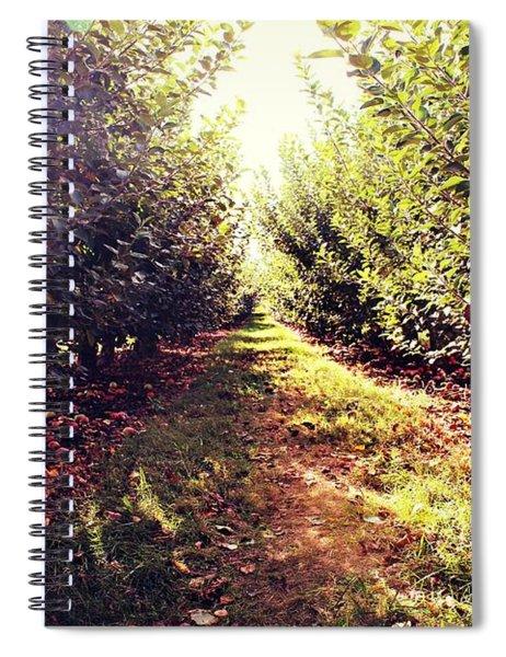 Apple Orchard Spiral Notebook