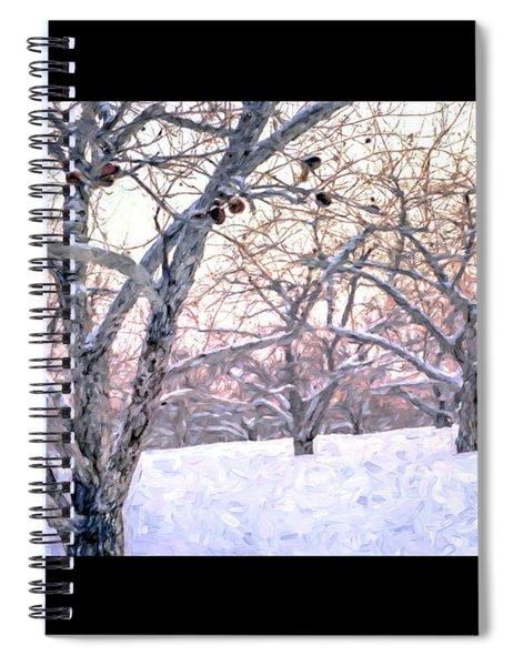 Apples In Winter Fine Art Poster Spiral Notebook
