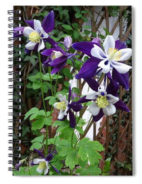 Aquilegia Spiral Notebook