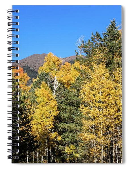 Arizona Aspens With Mountains Spiral Notebook