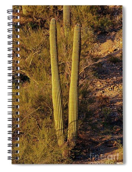 Arizona Goalposts Spiral Notebook
