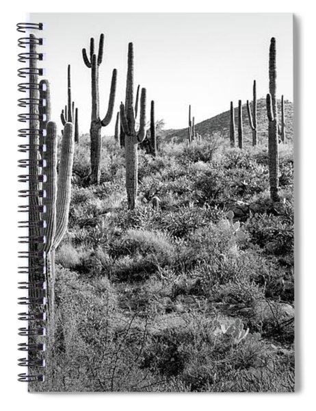 Arizona Saguaro Cactus Spiral Notebook