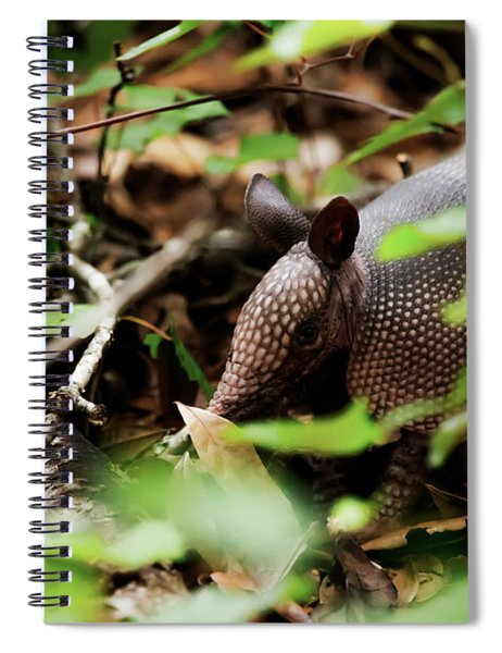 Armadillo  Spiral Notebook