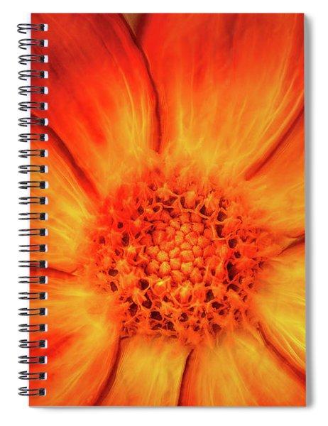Artistic Orange Dahlia Spiral Notebook
