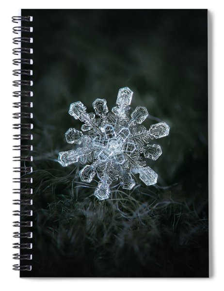 Real Snowflake - 04-feb-2018 - 1 Spiral Notebook
