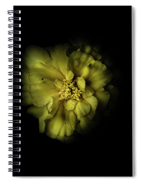 Backyard Flowers 41 Color Version Spiral Notebook