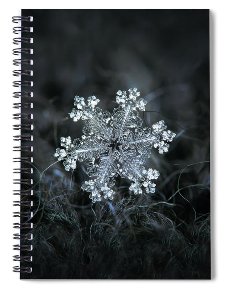 Real Snowflake - 26-dec-2018 - 1 Spiral Notebook