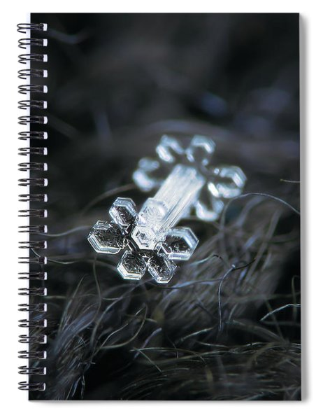 Real Snowflake - 27-jan-2019 - 1 Spiral Notebook