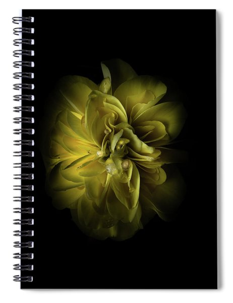 Backyard Flowers 67 Color Version Spiral Notebook