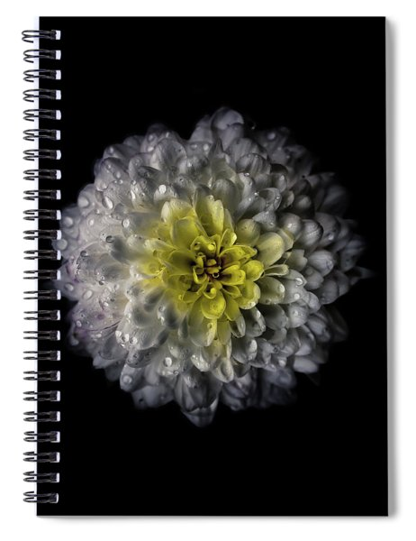Backyard Flowers 46 Color Version Spiral Notebook