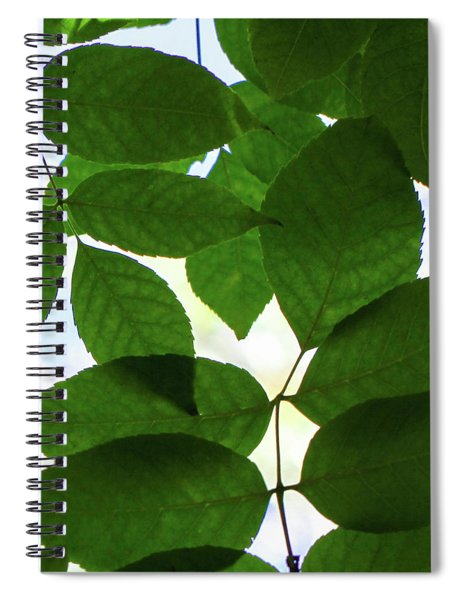 Spiral Notebook featuring the photograph Natural Patterns I by Emily Johnson