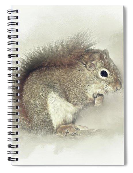 Woodland Squirrel Spiral Notebook