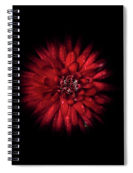 Backyard Flowers 45 Color Flow Version Spiral Notebook